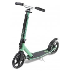 Frenzy 205mm Recreational Scooter Teal